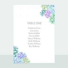Succulents - Table Plan Cards